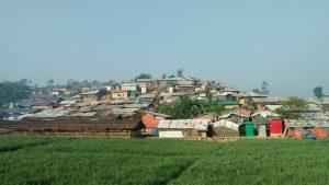 রোহিঙ্গাদের কারণে বন বিভাগের ক্ষতি ৬২০০ একর বন