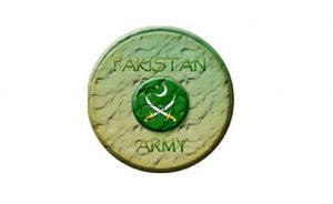 কাশ্মীরীদের পাশে আছে পাকিস্তান: সেনাপ্রধান