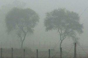 দেশের সর্বনিম্ন তাপমাত্রা পঞ্চগড়ে