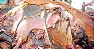 কুরবানির চামড়া নিয়ে যে কারণে শঙ্কায় ব্যবসায়ীরা
