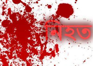 ভারতে যুদ্ধবিমান বিধ্বস্ত, পাইলট নিহত