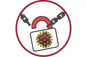 লকডাউনের ক্ষতি: রাজশাহীতে আমের দাম নিয়ে হতাশ চাষিরা